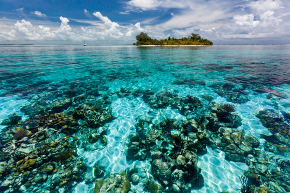 Half of World Heritage Sites at risk – but you can help