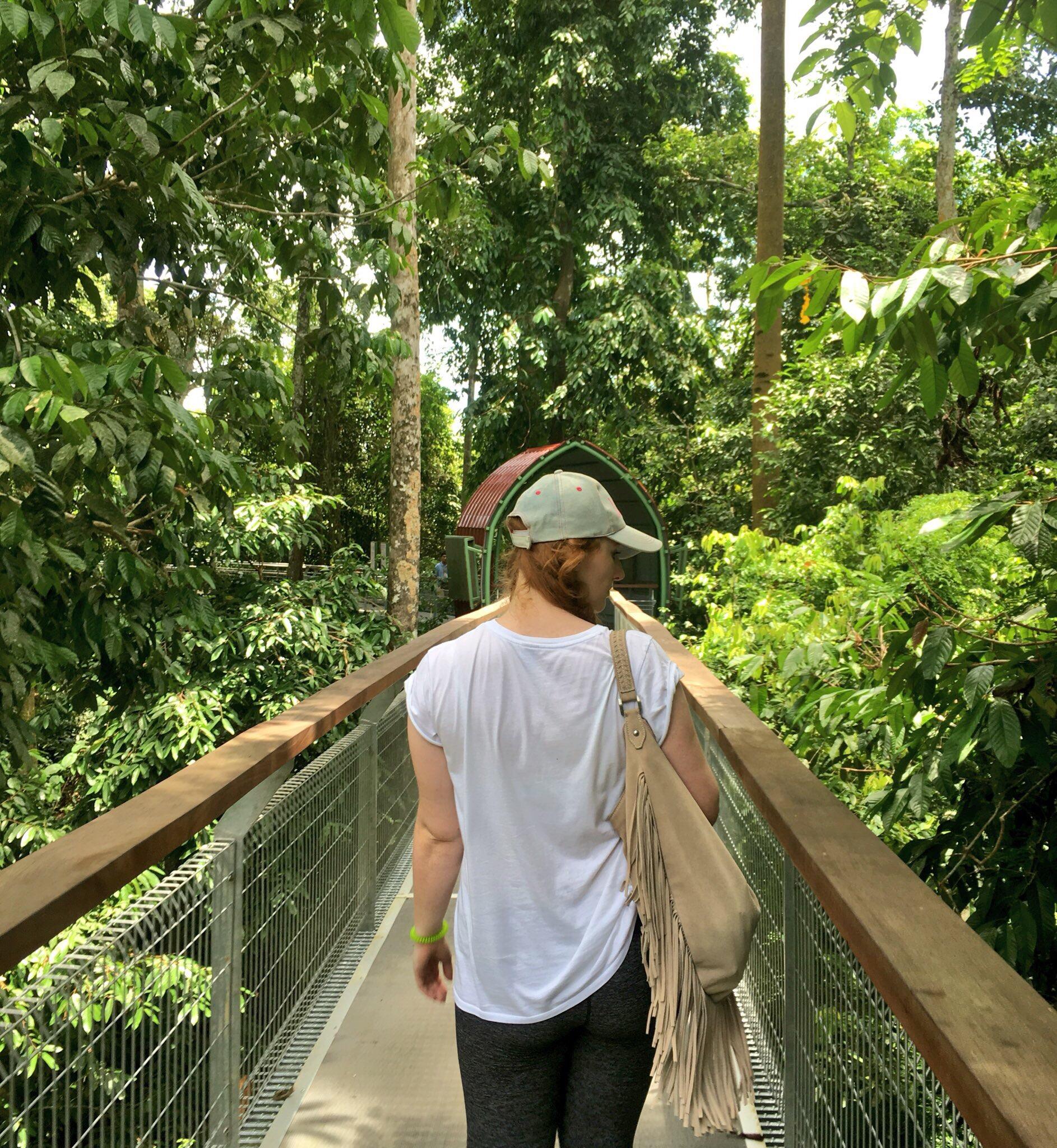 Sepilok Orangutan Centre