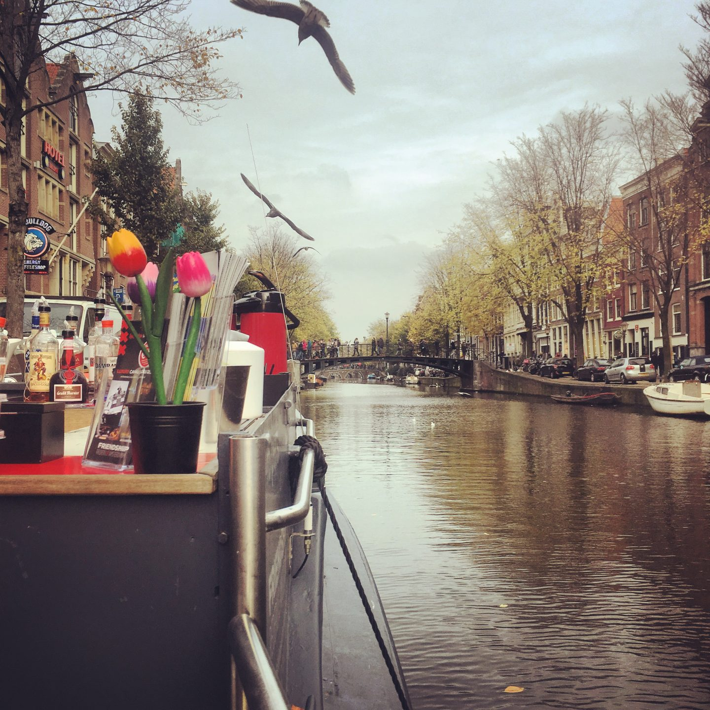 48 Hours in Amsterdam: Beer, Boats & Smokes