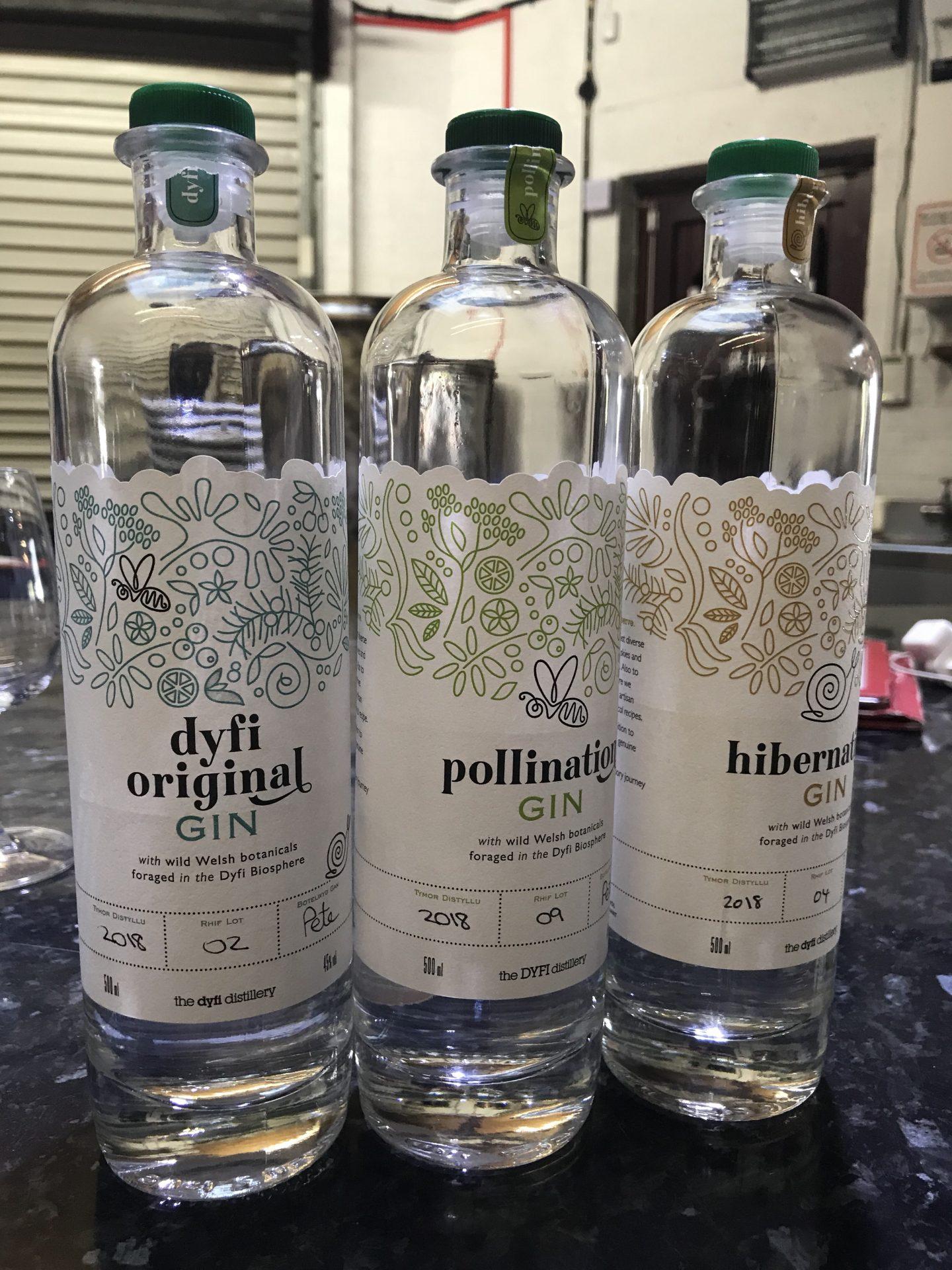 Dyfi Distillery Gin